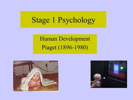 Stage 1 Psychology Human Development Piaget (1896-1980)