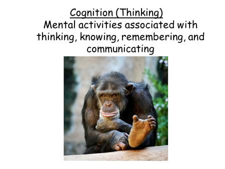 Cognition (Thinking) Mental activities associated with thinking, knowing, remembering, and communicating.
