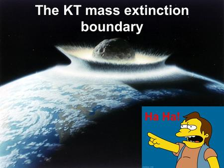 Ha Ha! The KT mass extinction boundary. KT (Cretaceous Tertiary) Boundary Layer exists simultaneously world wide Layer marks the transition from the.
