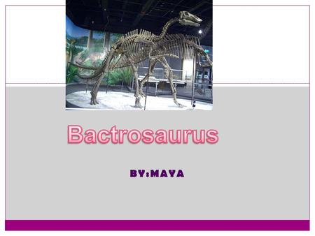 BY:MAYA The Dinosaur's Body Weight: 1.5 tons Height: 4.5 ft 1.4 cm Interesting things about your dinosaur's body: 1. My dinosaur can walk on two or four.
