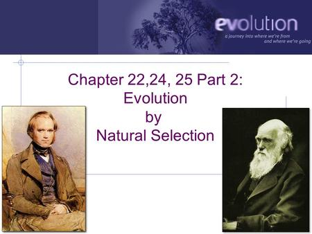 AP Biology 2006-2007 Chapter 22,24, 25 Part 2: Evolution by Natural Selection.