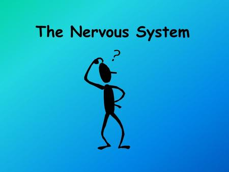 The Nervous System Parts of the Nervous System Central Nervous System Peripheral Nervous System.