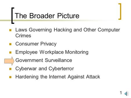 1 The Broader Picture Laws Governing Hacking and Other Computer Crimes Consumer Privacy Employee Workplace Monitoring Government Surveillance Cyberwar.