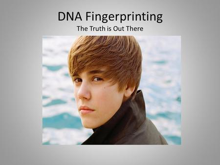 DNA Fingerprinting The Truth is Out There. 1. What is DNA Profiling? A technique used by scientists to distinguish between individuals of the same species.