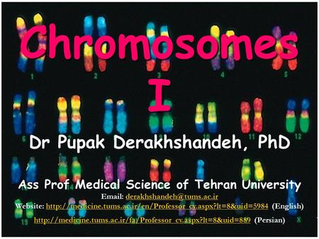 1 ChromosomesI Dr Pupak Derakhshandeh, PhD Ass Prof Medical Science of Tehran University   Website: