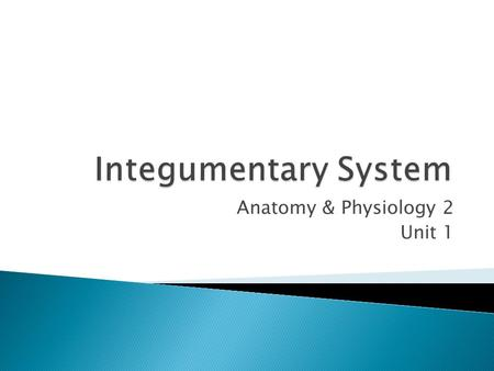 "Anatomy & Physiology 2 Unit 1.  Called the integument (meaning ""covering"")  It is essential in keeping water and other important molecules in the body."