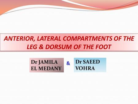 ANTERIOR, LATERAL COMPARTMENTS OF THE LEG & DORSUM OF THE FOOT Dr JAMILA EL MEDANY Dr SAEED VOHRA &