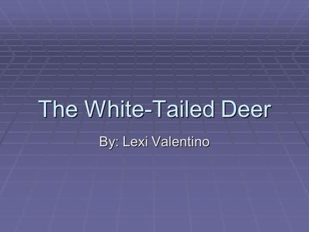 The White-Tailed Deer By: Lexi Valentino.