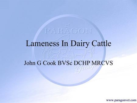 Lameness In Dairy Cattle