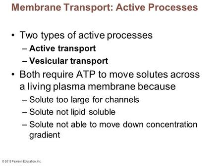 © 2013 Pearson Education, Inc. Membrane Transport: Active Processes Two types of active processes –Active transport –Vesicular transport Both require ATP.