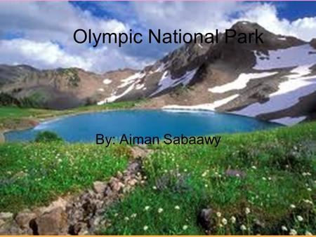 Olympic National Park By: Aiman Sabaawy. State-Washington Region-West Capital-Olympia Longitude-123.50°W Latitude-47.97°N.