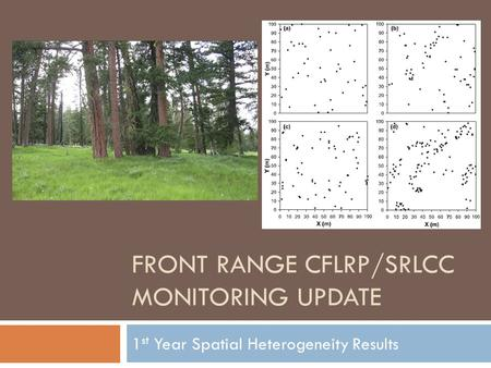 FRONT RANGE CFLRP/SRLCC MONITORING UPDATE 1 st Year Spatial Heterogeneity Results.