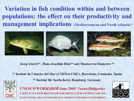 Variation in fish condition within and between populations: the effect on their productivity and management implications (Mediterranean and North Atlantic)