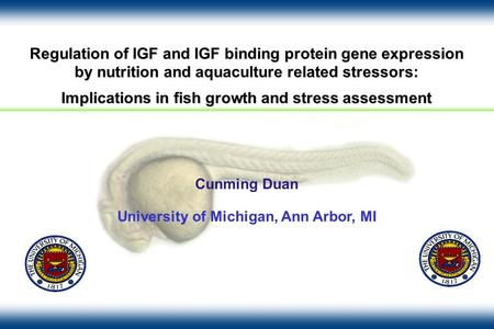 Regulation of IGF and IGF binding protein gene expression by nutrition and aquaculture related stressors: Implications in fish growth and stress assessment.