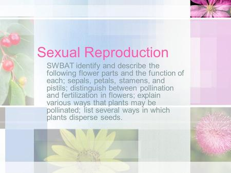 Sexual Reproduction SWBAT identify and describe the following flower parts and the function of each; sepals, petals, stamens, and pistils; distinguish.