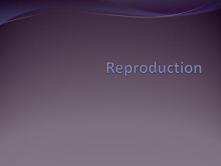 Sperm A male gamete or reproductive cell Can live for up to 5 days in a woman's body.