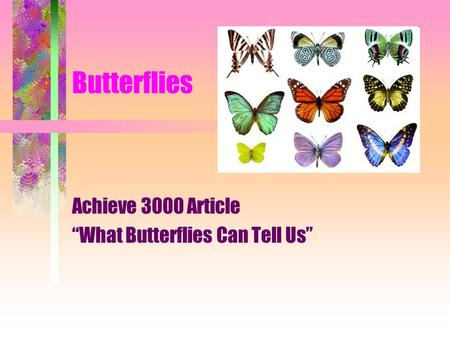 "Butterflies Achieve 3000 Article ""What Butterflies Can Tell Us"""