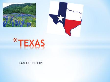 KAYLEE PHILLIPS. All About Land 695,677 square kilometers It covers 268,601 square miles * Presidents * Lyndon Baines Johnson * Dwight David Eisenhower.