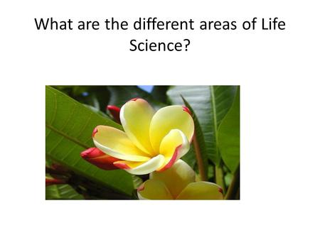 What are the different areas of Life Science?. Life Science = Biology.