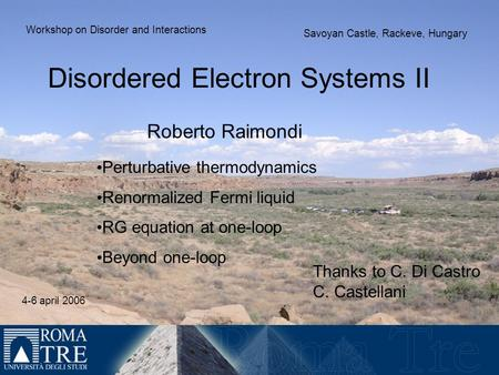 Disordered Electron Systems II Roberto Raimondi Perturbative thermodynamics Renormalized Fermi liquid RG equation at one-loop Beyond one-loop Workshop.