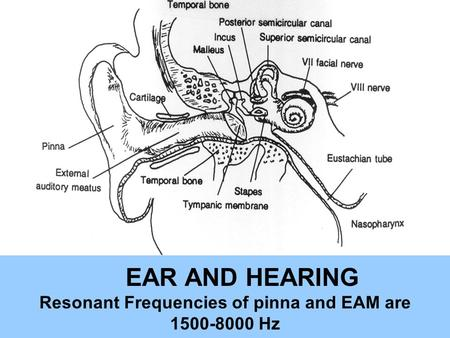 EAR AND HEARING Resonant Frequencies of pinna and EAM are 1500-8000 Hz.