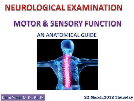 22.March.2012 Thursday. History Cerebral function (mental status) Cranial nerve function Motor function Sensory function Cerebellar function Reflex function.