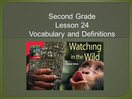 Second Grade Lesson 24 Vocabulary and Definitions.