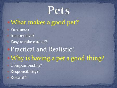 What makes a good pet? Furriness? Inexpensive? Easy to take care of? Practical and Realistic! Why is having a pet a good thing? Companionship? Responsibility?