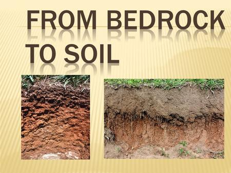  Soil is a loose mixture of small mineral fragments, organic material, water, and air that can support the growth of vegetation.