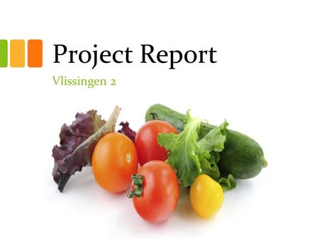 Project Report Vlissingen 2. Acculturation Objectives Help new students to deal with the Netherlands and the Dutch Language. Help students to obtain the.