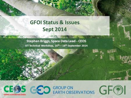 GFOI Status & Issues Sept 2014 Stephen Briggs, Space Data Lead - CEOS SIT Technical Workshop, 16 th – 18 th September 2014.