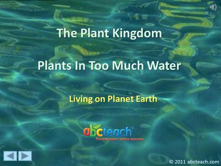 The Plant Kingdom Plants In Too Much Water Living on Planet Earth © 2011 abcteach.com.