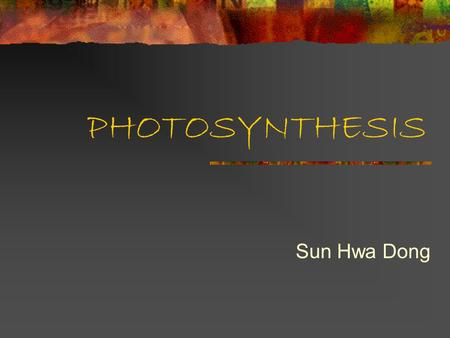 PHOTOSYNTHESIS Sun Hwa Dong. Photosynthesis Produces organic substances Uses light Energy, Simple inorganic substances Light Energy to Chemical Energy.