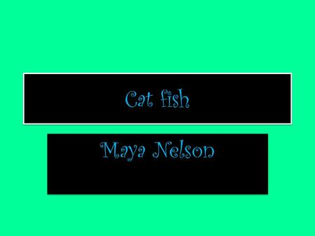 Cat fish Maya Nelson. Habitat of your animal Location: Pacific Ocean characteristics: plants and a lot of fish What it takes to survive: aquatic plants,