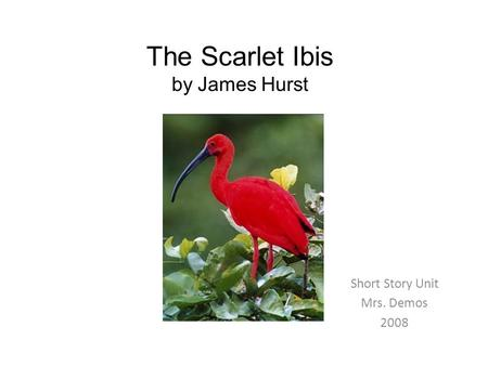 The Scarlet Ibis by James Hurst Short Story Unit Mrs. Demos 2008.