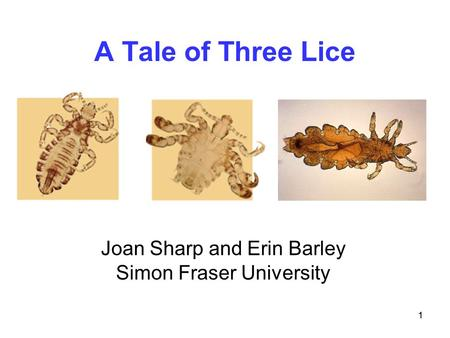 A Tale of Three Lice Joan Sharp and Erin Barley