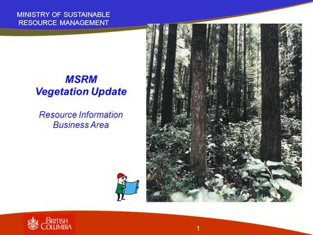 MINISTRY OF SUSTAINABLE RESOURCE MANAGEMENT 1 MSRM Vegetation Update Resource Information Business Area.