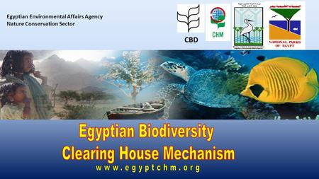 Egyptian Environmental Affairs Agency Nature Conservation Sector CBD.