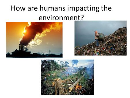 the environment now what