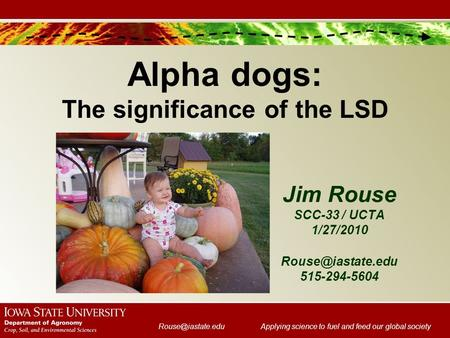 science to fuel and feed our global society Jim Rouse SCC-33 / UCTA 1/27/2010 Alpha dogs: The significance of the LSD