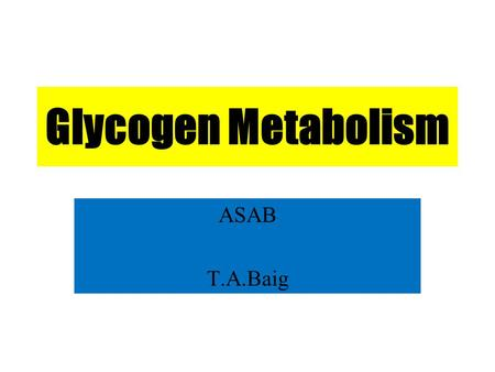 Glycogen Metabolism ASAB T.A.Baig. Overview A constant source of blood glucose is an absolute requirement for human life. Glucose is the greatly preferred.