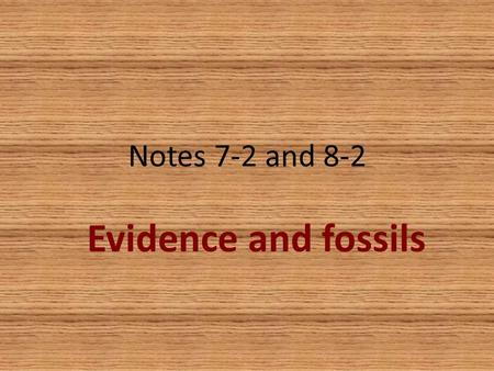 Notes 7-2 and 8-2 Evidence and fossils. Evidence of evolution Similar body structures Patterns of early development Molecular structure Fossils.