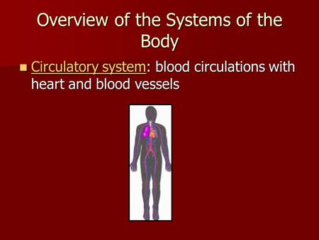 Overview of the Systems of the Body Circulatory system: blood circulations with heart and blood vessels Circulatory system: blood circulations with heart.