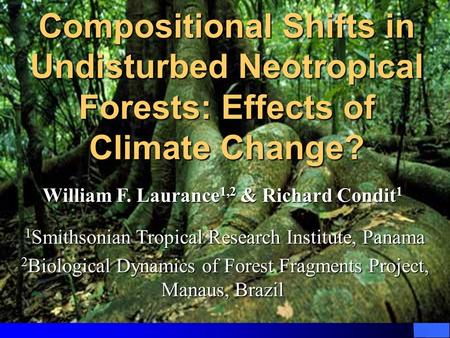 Compositional Shifts in Undisturbed Neotropical Forests: Effects of Climate Change? William F. Laurance 1,2 & Richard Condit 1 William F. Laurance 1,2.