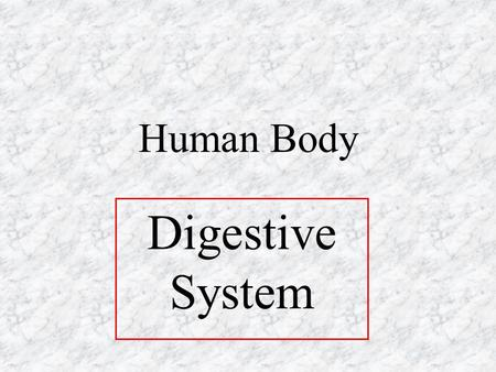 Human Body Digestive System. Functions 1.Break down food (digest) 2.Take in food (ingest) 3.Absorb nutrients from food 4.Eliminate (get rid of) solid.