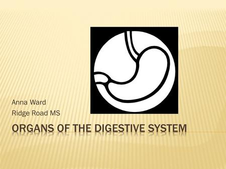 Anna Ward Ridge Road MS.  The Digestive System is the body system which breaks down food so that cells can use it for energy. It includes:  Esophagus.