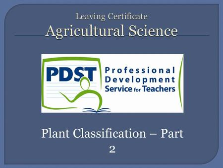 Plant Classification – Part 2.  Also known as the Rose Family.  It includes apple, pear, peach, plum, cherry, apricot, almond, nectarine, prune, raspberry,