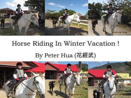 Horse Riding In Winter Vacation ! By Peter Hua ( 花經武 )