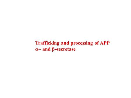 Trafficking and processing of APP  and  -secretase.