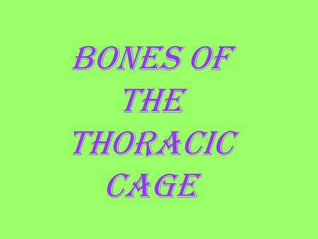 BONES OF THE THORACIC CAGE. Name the green vertebrae. (LIST) thoracic.